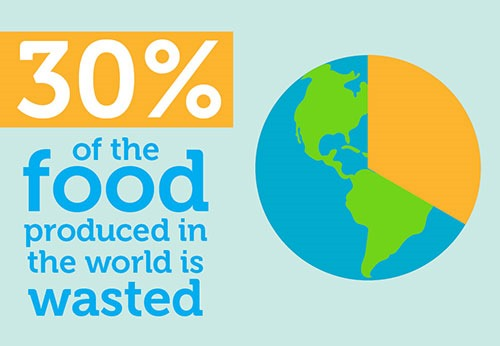 30 percent of the food produced in the world is wasted